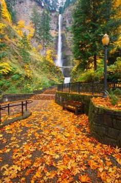 Possibly Oregon. Waterfall in autumn.