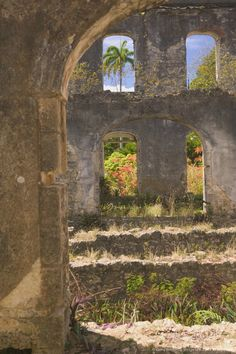 Image detail for -Ruins of old 19th century sugar plantation, Farley Hill National Park, St. Peter Parish, Barbados