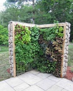 vertical garden made with stones