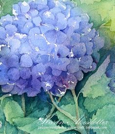 Sunday Watercolor: Hortensia  For more info: I share my creative projects here: https://www.instagram.com/peppermintpatty42/ and on my blog: http://peppermintpattys-papercraft.blogspot.se and on pinterest; https://www.pinterest.se/peppermint42/my-watercolors/