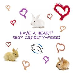 Get started at LeapingBunny.org! #BeCrueltyFree
