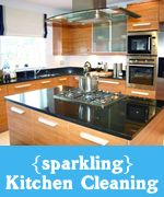Get a sparkling clean kitchen with e-cloth and water. No chemicals required.