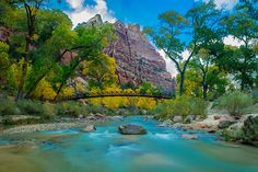 On this day in 1919, Zion National Park was established — making it the first national park in Utah. Today, Zion's spectacular network of colorful canyons, forested mesas and striking deserts from all over the world. Photo by Brent Johnson (www.sharetheexperience.org).