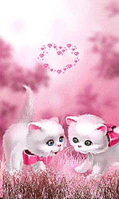 Animation - Thanks to Ashaley Lenora for sending me these pretty-in-pink sweet kitties. Animiertes Gif, Animated Gif, Gifs, Image Chat, Beautiful Gif, Glitter Graphics, Animation, Gif Pictures, Live Wallpapers