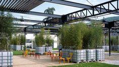 Halle des marchés, jardin et traitement des espaces publics, Tarare, Rhône…