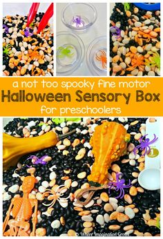 A fun Halloween sensory bin for preschoolers! Fine motor fun that explores Halloween themes in a fun way for kids! Not too spooky but lots of fall and Halloween fun! Halloween Activities For Toddlers, Fun Halloween Games, Sensory Activities Toddlers, Toddler Halloween, Sensory Bins, Craft Activities For Kids, Spooky Halloween, Halloween Themes, Sensory Play
