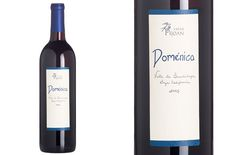 vino mexicano Doménica de Viñas Pijoan, excelente!