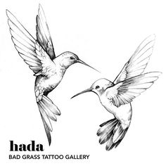 Reserved project - hummingbird tattoo - Hada Tattoo artwork The Effective Pictures We Offer You Abou Tattoo Sketches, Drawing Sketches, Tattoo Drawings, Natur Tattoos, Kunst Tattoos, Bird Drawings, Animal Drawings, Drawing Birds, Book Drawing