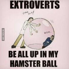 Introvert humor, introvert и introvert problems. Introvert Personality, Introvert Quotes, Introvert Problems, Extroverted Introvert, Personality Types, Introvert Cat, Entp, Funny Quotes About Life, Life Quotes