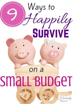 tips to survive on a small budget? DONE! #Doublethebatch debt management, debt payoff #debt