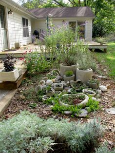 Rock garden, October 2011 | I have many tender succulents th… | Flickr - Photo Sharing!