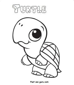 Turtle coloring pages color plate coloring sheetprintable