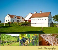 Winery Vineyard, Studio, Photography, Outdoor, Bonheur, Outdoors, Photograph, Vine Yard, Fotografie
