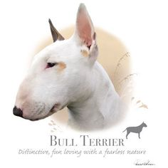 sewn on bull terrier images | BULL TERRIER dog fabric - Large Picture on One Fat Quarter Fabric ...