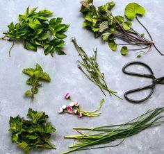 Ätliga blommor, ogräs, blad och skott Magic Herbs, Housekeeping Tips, Skott, How To Make Jam, Edible Flowers, Medicinal Plants, Wild Nature, Raw Food Recipes, Green Leaves