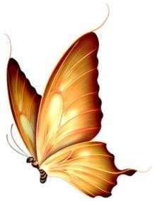 Barnali Bagchi fonds et tubes - Schmetterling Butterfly Clip Art, Butterfly Drawing, Orange Butterfly, Butterfly Pictures, Butterfly Painting, Butterfly Wallpaper, Butterfly Design, Yellow Butterfly Tattoo, Art Papillon