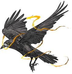 AS THE CROW FLIES on Behance
