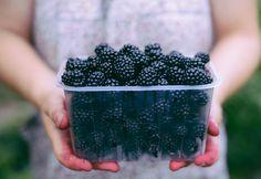 Černice a ich účinky: Vieš, v čom spočíva ich jedinečná sila? Growing Blackberries, Grow Your Own, Blackberry, Veggies, Fruit, Cooking, Sweet, Autumnal, Juices