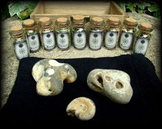 Anglo-Saxon Nine Wort Charm Box  Witchcraft Druid by WytchenWood