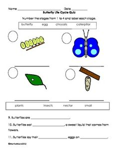 90 Best 2nd Grade Science-Life Cycles images in 2013 ...