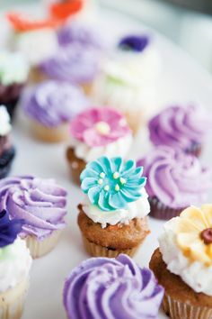 Colourful cupcakes. Photography courtesy of Ikonica Photography.