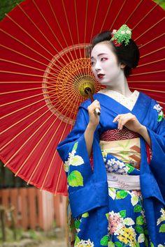 geisha-kai: June 2015: maiko Mikako with solid bamboo parasol by ta_ta999 - blog