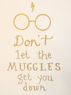 Don't Let the Muggles Get You Down Wall Art by BugabooBearDesigns