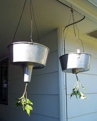 So heres the other thing bundt cake pans are good for...hanging tomato planter. Clever!