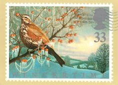 Postcard from the United Kingdom ~ Wintertime (The Redwing) ~ Reproduced from a stamp designed by John Gorham, illustrated by Keith Bowen and issued by the Royal Mail on January 14, 1992. www.postcrossing.com