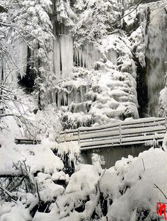Winter water fall, Black Forest, Germany