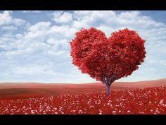 Já jsem esencí života a lásky…