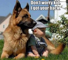 "Hah!!! Ya, Think? The GSD will die before he allows anyone to touch that child. You can't ask for better protection. They suck at babysitting but, they will protect their ""charges"" to the death. Bless all the GSD's and their tie to man."