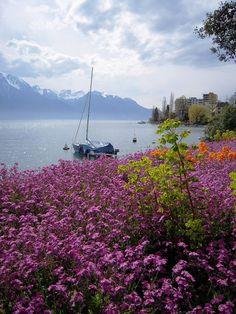 #Montreux, Vaud, West, Switzerland