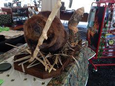 49lb Beaver with Custom Made Base