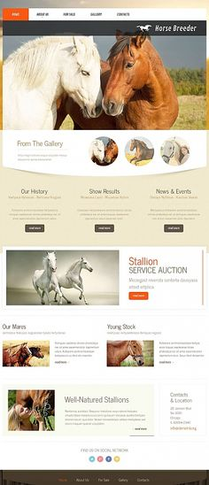 Auction Website Template Uxi® Law Firm Website Templates Are Designed Specifically For