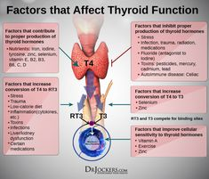 Thyroid Strong – Dr. Jockers Store