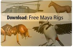 All About Animation: Free Download Maya Rigs: Bird | Horse | Ant | Creature & many more