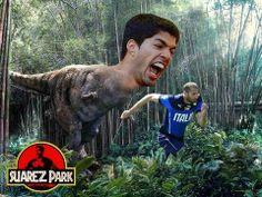 Suarez Park...