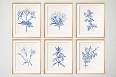 Blue Botanical Prints Blue Wall Art Botanical by BeachHouseGallery