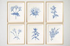 Blue Botanical Prints Blue Wall Art Botanical by BeachHouseGallery