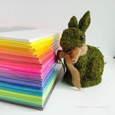 Craftaholics Anonymous®   Rainbow Paper Dahlia Flowers