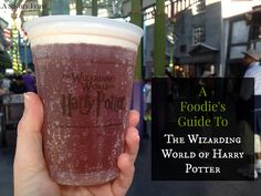 Jacksonville is a mere two hours from Orlando! A Foodie's Guide to The Wizarding World of Harry Potter at Universal Studios and Islands of Adventure in Orlando, Florida. Orlando Travel, Orlando Vacation, Florida Vacation, Florida Travel, Orlando Florida, Disney Universal Studios, Universal Studios Florida, Universal Orlando, Harry Potter Universal