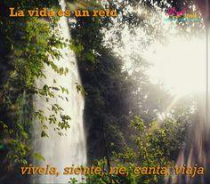 vive, siente, rie, canta, #Viaja