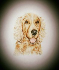 Portrait on arches paper with pastel pencils 25x25