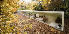 """An office space for architects that is literally """"one"""" with nature. :)"""