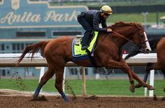 Justify works six furlongs in company with Hoppertunity in 1:13 1/5 at Santa Anita Park