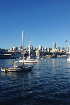 What to do in Sydney besides e famous sights. A full day exploring one the most beautiful cities in he world like a local.
