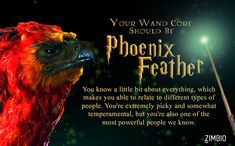 I got Phoenix feather. What would be at the core of your wand? - Quiz