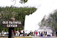 Stock Photo titled: Old Faithful Geyser And Sign Yellowstone National Park Jackson Hole Wyoming, unlicensed use prohibited
