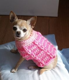 Cotton Candy Dog Sweater.